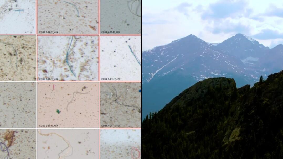 W parku narodowym w USA pada deszcz z mikroplastikiem