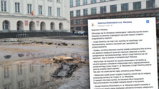 Wycinka przed urzędem dzielnicy Śródmieście Artur Węgrzynowicz, tvnwarszawa.pl