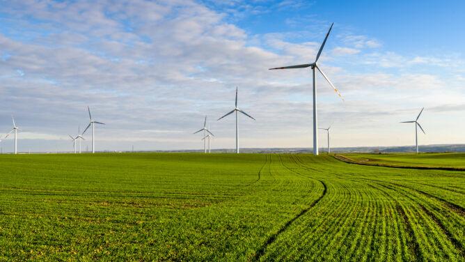 Energia wiatrowa to przyszłość. <br />Bez niej czeka nas cywilizacyjny krach