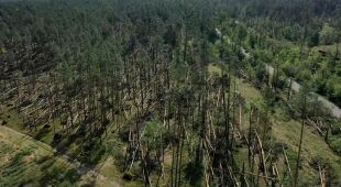 Nawałnica przeszła przez Bory Tucholskie - zniszczenia w Tleniu i Osiach