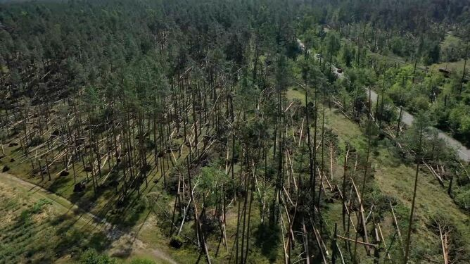 Po kataklizmie w Tleniu. Dziewięć lat temu w okolicy przeszła trąba powietrzna